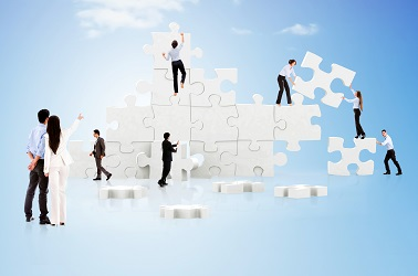 Network & Consultancy 6
